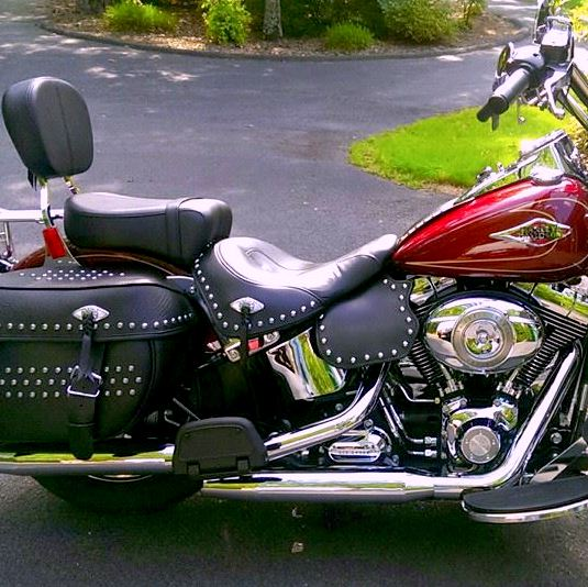 Harley-Davidson heat shield with stainless steel studs