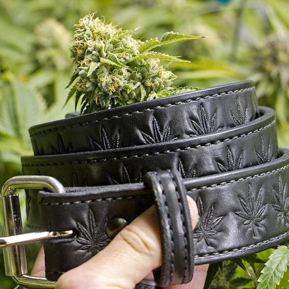 cannabis embossed leather belt