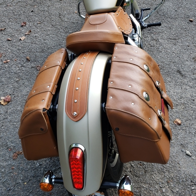 Indian Scout fender bib wit studs